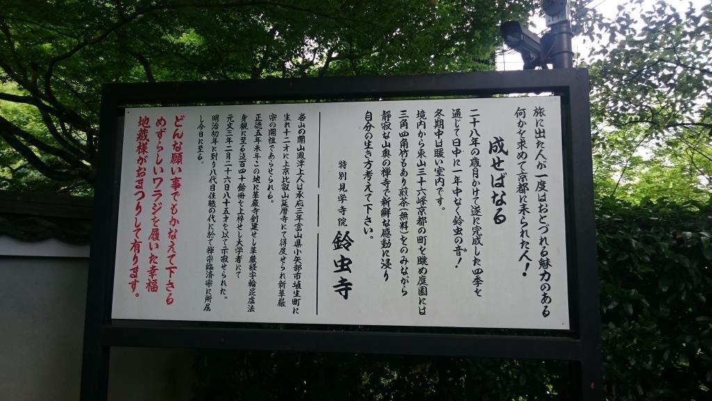 suzumusi1.JPG